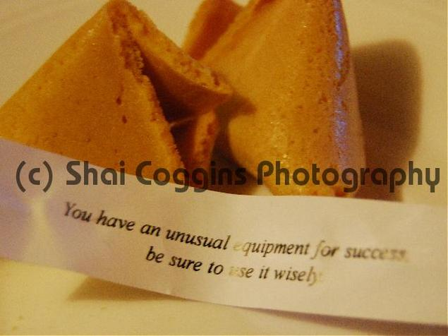 Product picture Photo: Fortune Cookie Success